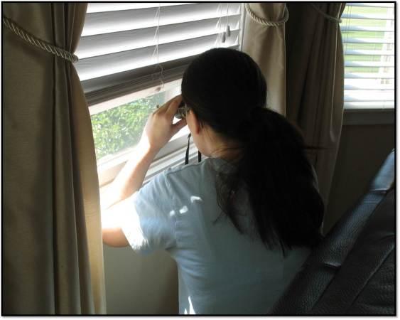 Arden at window bird watching