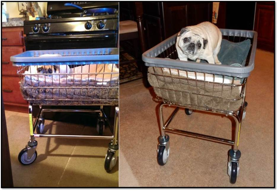 Using Laundry Cart To Help With Mobility Issues