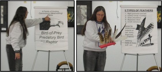 Berni SOAR Raptor Program Feather Demonstration