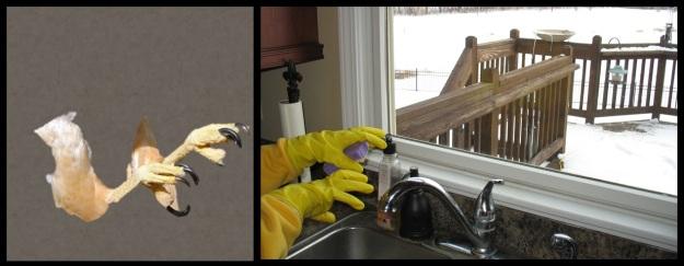 dish gloves make hands look like talons