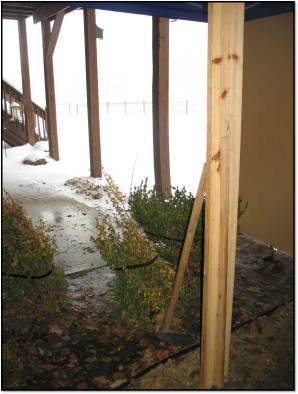 view from inside the potty tent