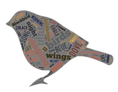 Bird Song Word Cloud