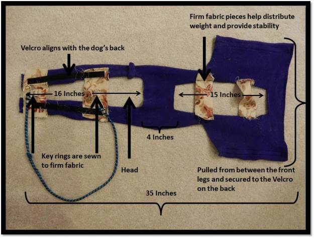 Summer weight dog harness details