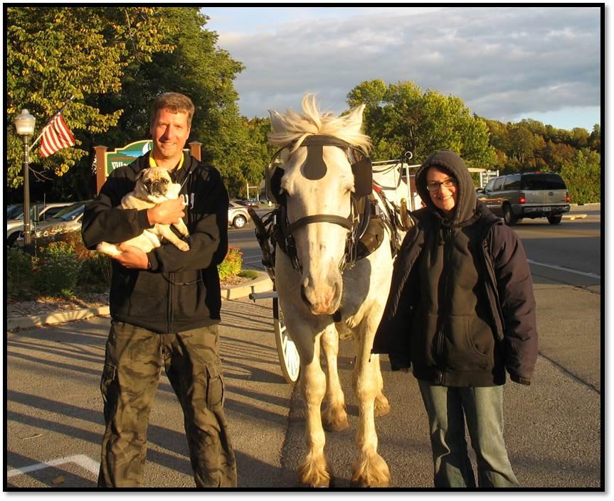 Joel Arden Peanut Horse Door Country