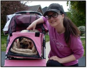 Arden Zich Peanut pug dog buggy